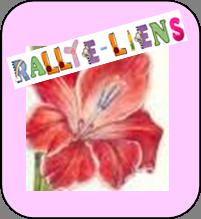 http://glayeul91.free.fr/monblog/wp-content/uploads/2012/08/BOUTON-RALLYE-LIEN2.png